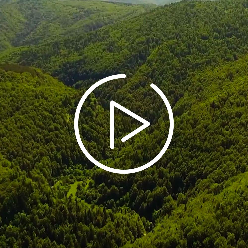video-area-sostenible